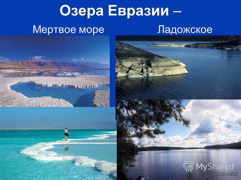Free Powerpoint Templates Page 22 Озера Евразии – Мертвое море Ладожское