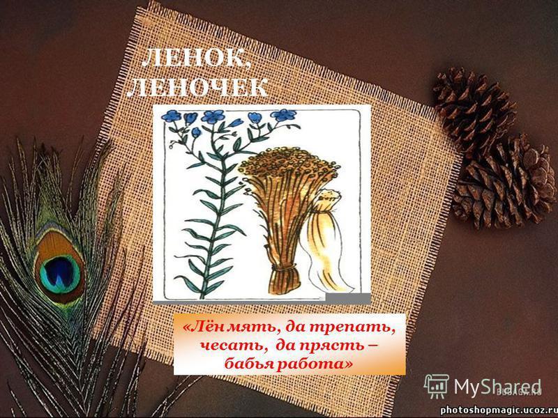 ЛЕНОК, ЛЕНОЧЕК «Лён мять, да трепать, чесать, да прясть – бабья работа»