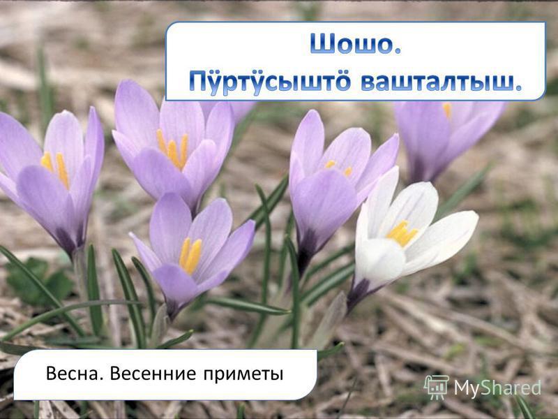 Весна. Весенние приметы