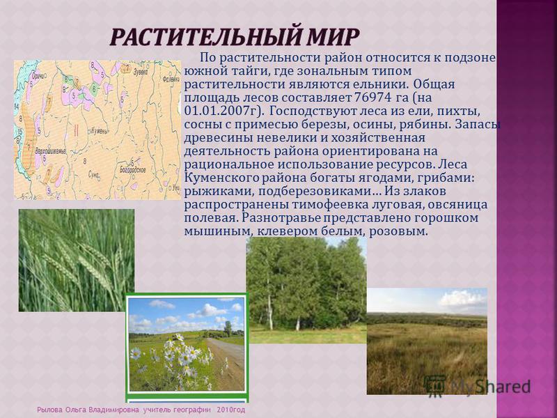 По растительности район относится к подзоне южной тайги, где зональным типом растительности являются ельники. Общая площадь лесов составляет 76974 га (на 01.01.2007 г). Господствуют леса из ели, пихты, сосны с примесью березы, осины, рябины. Запасы д