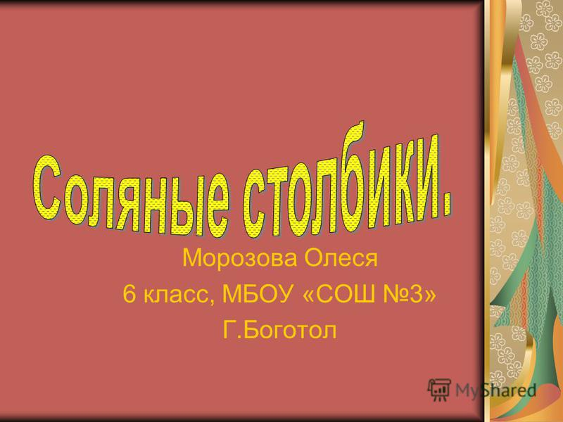 Морозова Олеся 6 класс, МБОУ «СОШ 3» Г.Боготол