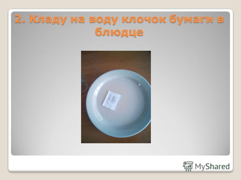 2. Кладу на воду клочок бумаги в блюдце