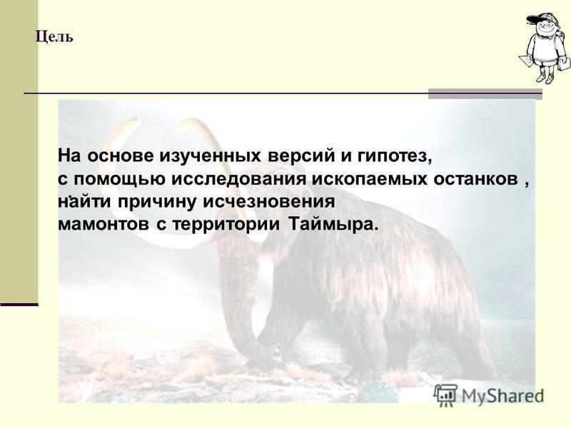 Цель. На основе изученных версий и гипотез, с помощью исследования ископаемых останков, найты причину исчезновения мамонтов с территории Таймыра.