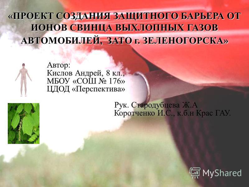 «ПРОЕКТ СОЗДАНИЯ ЗАЩИТНОГО БАРЬЕРА ОТ ИОНОВ СВИНЦА ВЫХЛОПНЫХ ГАЗОВ АВТОМОБИЛЕЙ, ЗАТО г. ЗЕЛЕНОГОРСКА» Автор: Кислов Андрей, 8 кл., МБОУ «СОШ 176» ЦДОД «Перспектива» Рук. Стародубцева Ж.А Коротченко И.С., к.б.н Крас ГАУ.