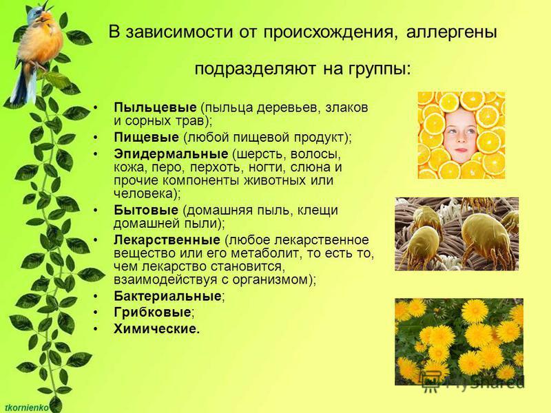 Пыльцевые (пыльца деревьев, злаков и сорных трав); Пищевые (любой пищевой продукт); Эпидермальные (шерсть, волосы, кожа, перо, перхоть, ногти, слюна и прочие компоненты животных или человека); Бытовые (домашняя пыль, клещи домашней пыли); Лекарственн