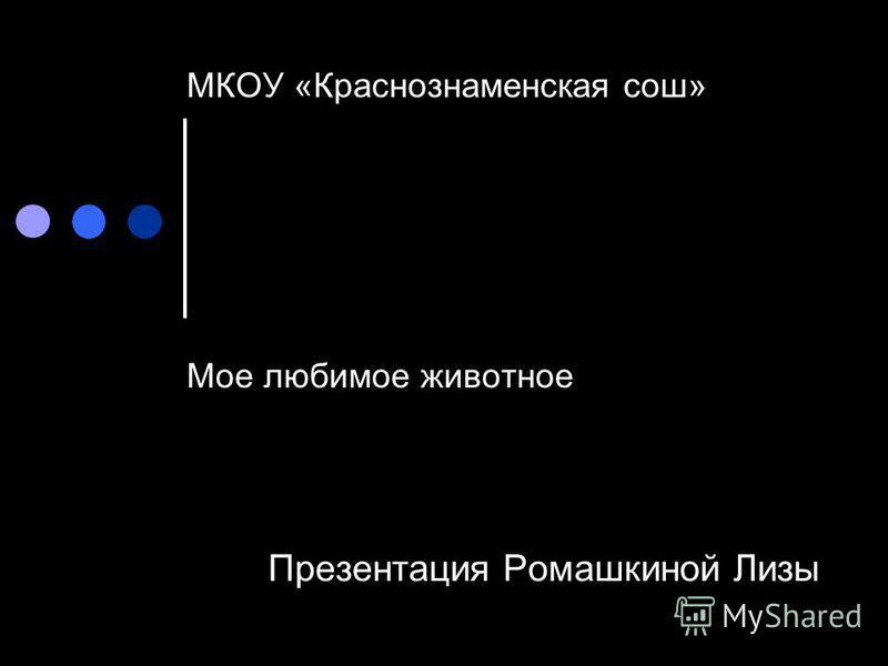 МКОУ «Краснознаменская сош» Мое любимое животное Презентация Ромашкиной Лизы