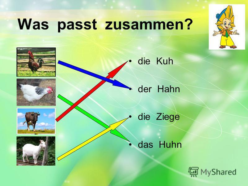 Was passt zusammen? die Kuh der Hahn die Ziege das Huhn