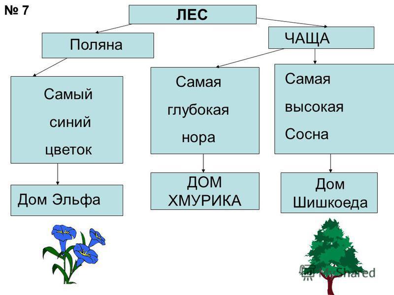 ЛЕС Поляна ЧАЩА Самый синий