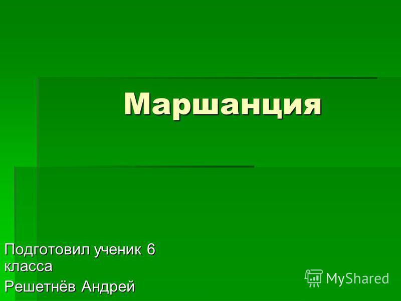 Маршанция Подготовил ученик 6 класса Решетнёв Андрей