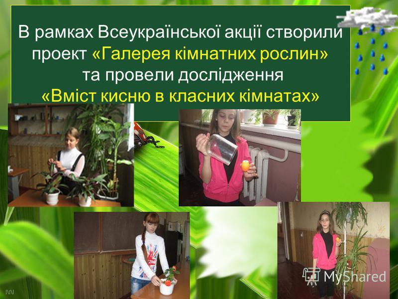 В рамках Всеукраїнської акції створили проект «Галерея кімнатних рослин» та провели дослідження «Вміст кисню в класних кімнатах»