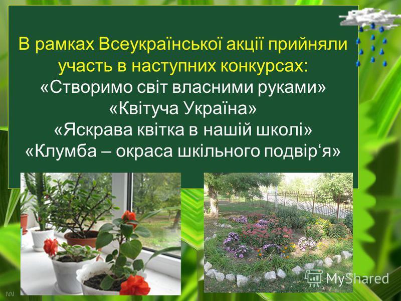 В рамках Всеукраїнської акції прийняли участь в наступних конкурсах: «Створимо світ власними руками» «Квітуча Україна» «Яскрава квітка в нашій школі» «Клумба – окраса шкільного подвіря»
