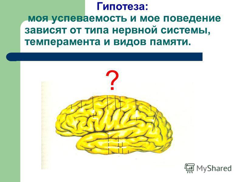 Гипотеза: моя успеваемость и мое поведение зависят от типа нервной системы, темперамента и видов памяти. ?