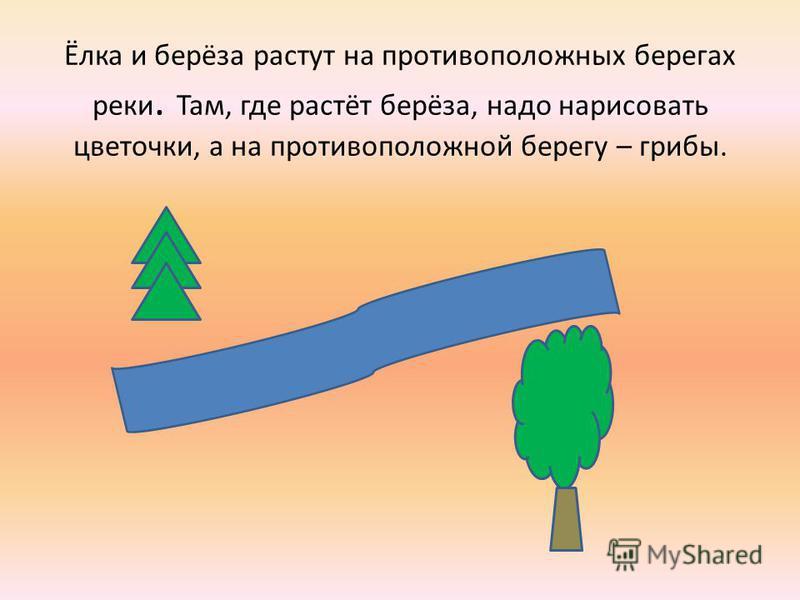 Ёлка и берёза растут на противоположных берегах реки. Там, где растёт берёза, надо нарисовать цветочки, а на противоположной берегу – грибы.