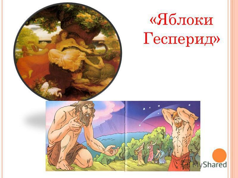 «Яблоки Гесперид»