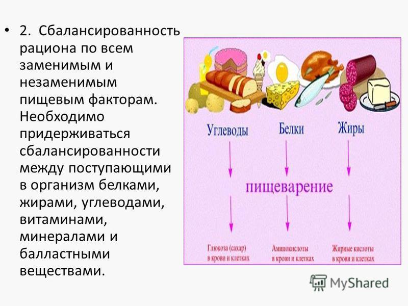 2. Сбалансированность рациона по всем заменимым и незаменимым пищевым факторам. Необходимо придерживаться сбалансированности между поступающими в организм белками, жирами, углеводами, витаминами, минералами и балластными веществами.