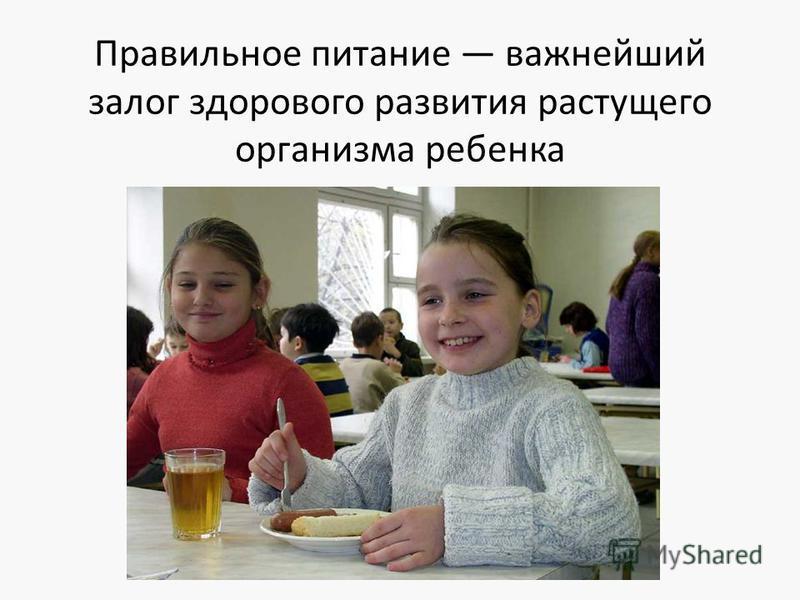 Правильное питание важнейший залог здорового развития растущего организма ребенка