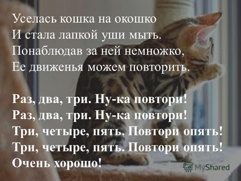 Уселась кошка на окошко И стала лапкой уши мыть. Понаблюдав за ней немножко, Ее движенья можем повторить. Раз, два, три. Ну-ка повтори! Раз, два, три. Ну-ка повтори! Три, четыре, пять. Повтори опять! Три, четыре, пять. Повтори опять! Очень хорошо!