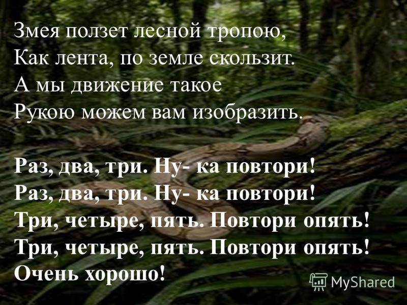 Змея ползет лесной тропою, Как лента, по земле скользит. А мы движение такое Рукою можем вам изобразить. Раз, два, три. Ну- ка повтори! Раз, два, три. Ну- ка повтори! Три, четыре, пять. Повтори опять! Три, четыре, пять. Повтори опять! Очень хорошо!