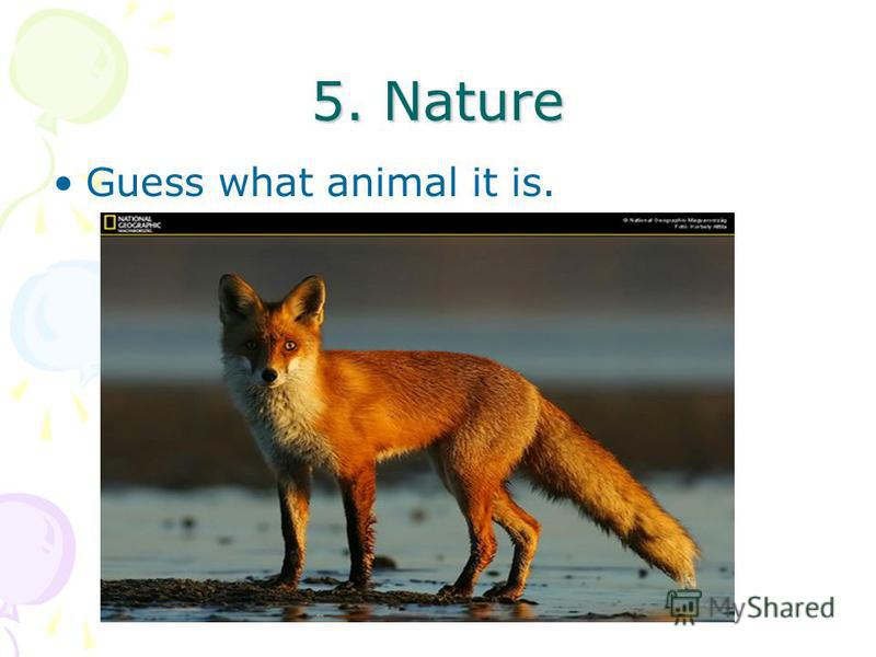 5. Nature Guess what animal it is.