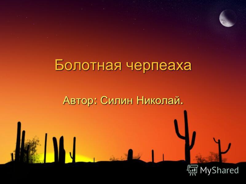 Болотная черепаха Автор : Силин Николай.