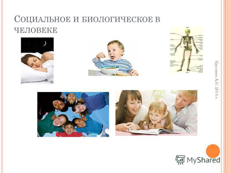 С ОЦИАЛЬНОЕ И БИОЛОГИЧЕСКОЕ В ЧЕЛОВЕКЕ Куракин А.В. 2014 г.