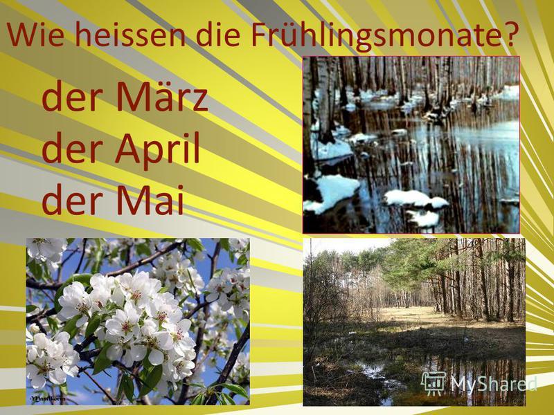 Wie heissen die Frühlingsmonate? der März der April der Mai