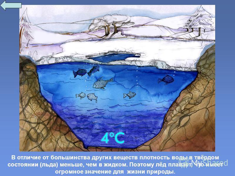 В отличие от большинства других веществ плотность воды в твёрдом состоянии (льда) меньше, чем в жидком. Поэтому лёд плавает, что имеет огромное значение для жизни природы.