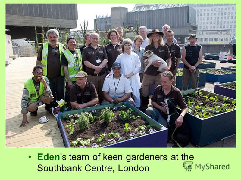 Eden's team of keen gardeners at the Southbank Centre, London