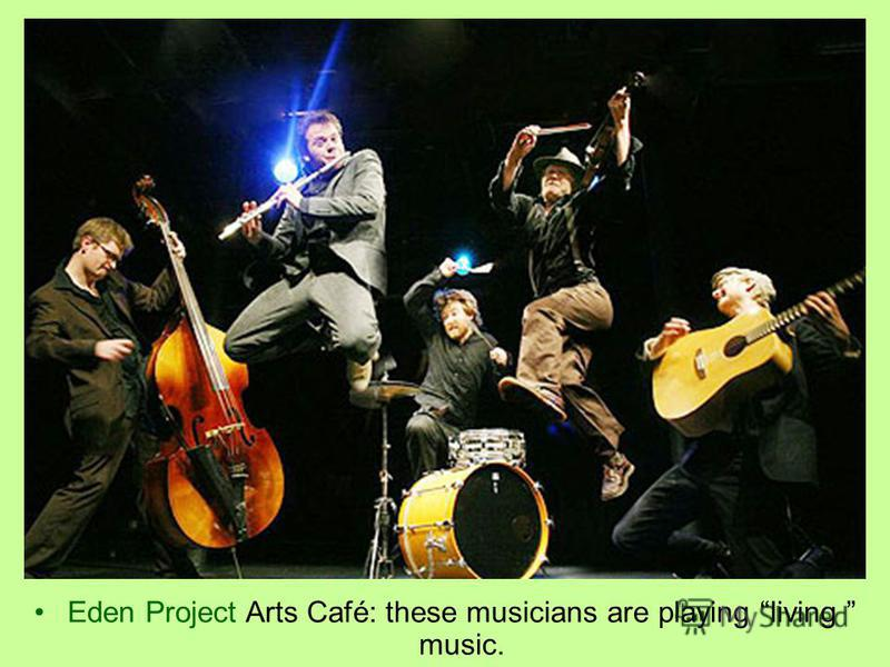 Eden Project Arts Café: these musicians are playing living music.