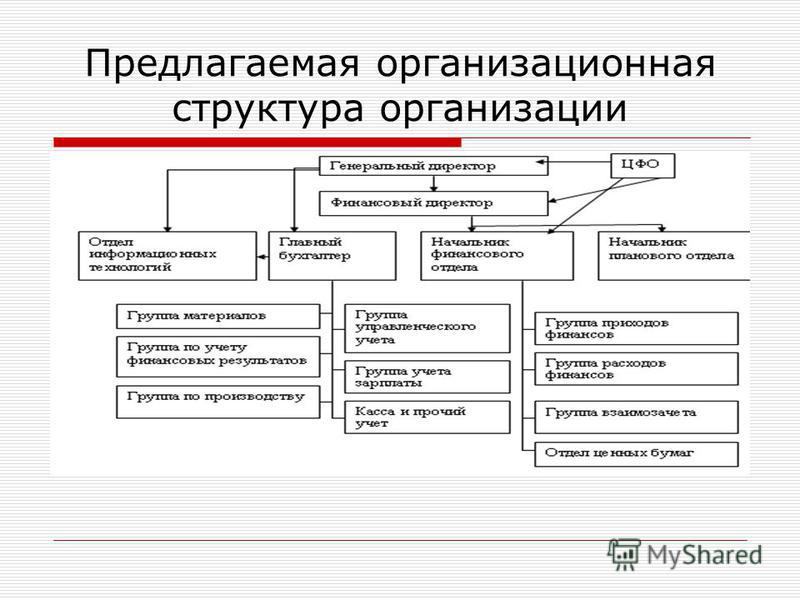 Предлагаемая организационная структура организации