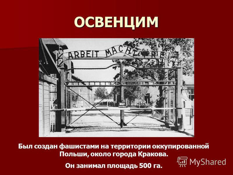 ОСВЕНЦИМ Был создан фашистами на территории оккупированной Польши, около города Кракова. Он занимал площадь 500 га.