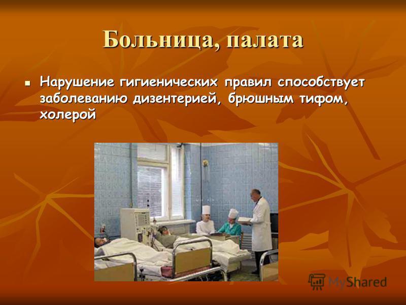 Больница, палата Нарушение гигиенических правил способствует заболеванию дизентерией, брюшным тифом, холерой Нарушение гигиенических правил способствует заболеванию дизентерией, брюшным тифом, холерой