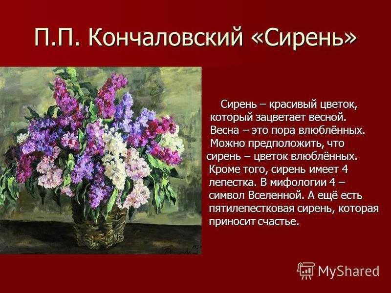 П.П. Кончаловский «Сирень» Сирень – красивый цветок, Сирень – красивый цветок, который зацветает весной. который зацветает весной. Весна – это пора влюблённых. Весна – это пора влюблённых. Можно предположить, что Можно предположить, что сирень – цвет