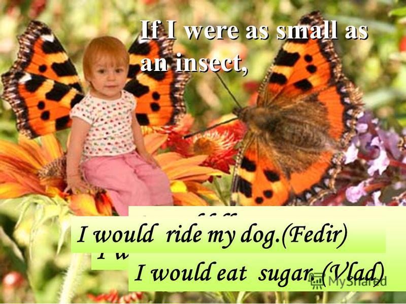 If I were as small as an insect, I would ride my cat. (Valya) I would fly on my parrot. I would eat sugar. (Vlad) I would ride my dog.(Fedir)