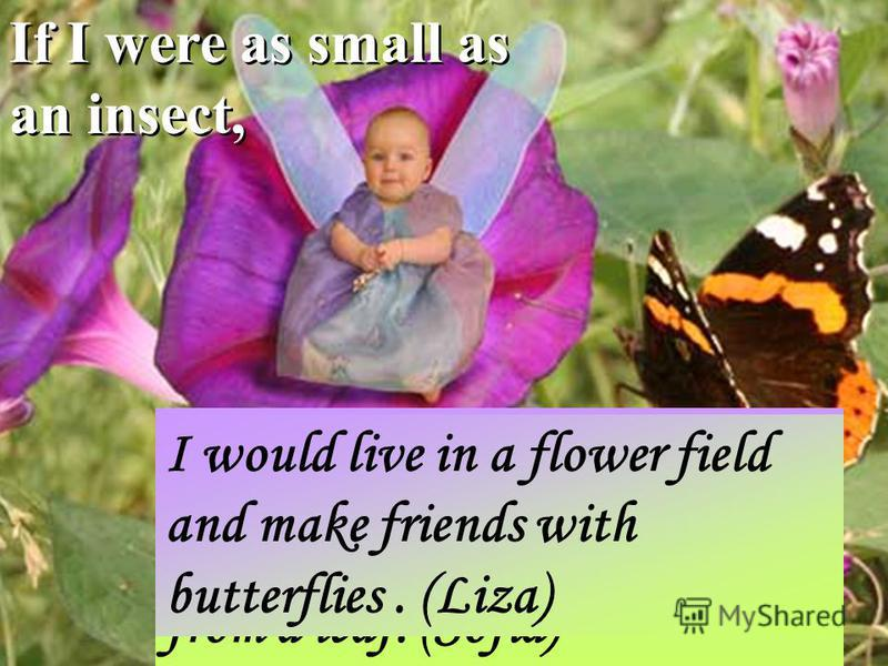 If I were as small as an insect, I would ride my hamster. I would sleep in a hammock from a leaf. (Sofia) I would live in a flower field and make friends with butterflies. (Liza)