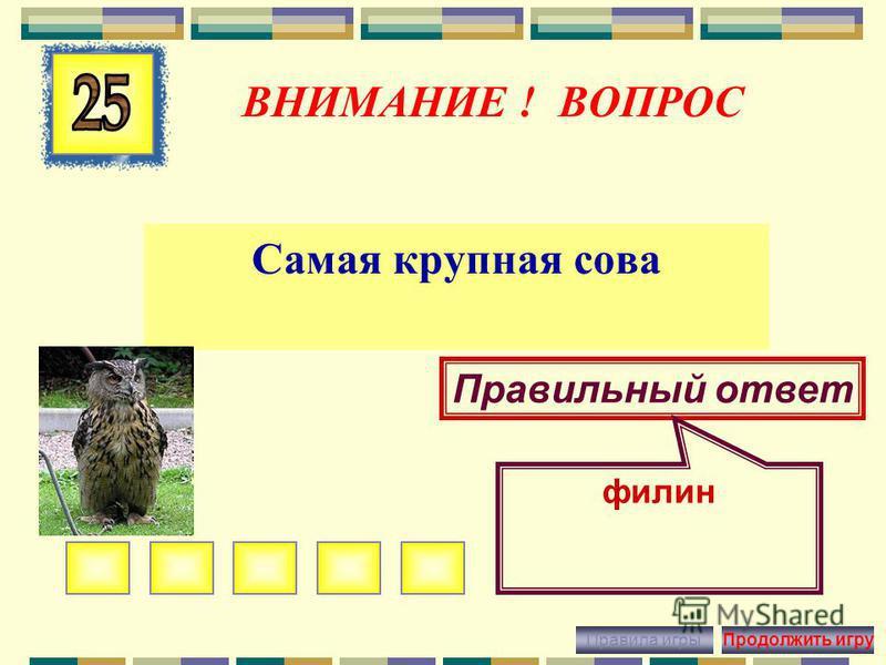 ВНИМАНИЕ ! ВОПРОС Крупная хищная птица, обитающая в степях Правильный ответ беркут Правила игры Продолжить игру