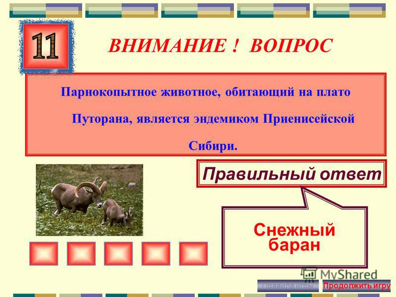 ВНИМАНИЕ ! ВОПРОС Ластоногое животное, обитающий на северном побережье Красноярского края Правильный ответ морж Правила игры Продолжить игру