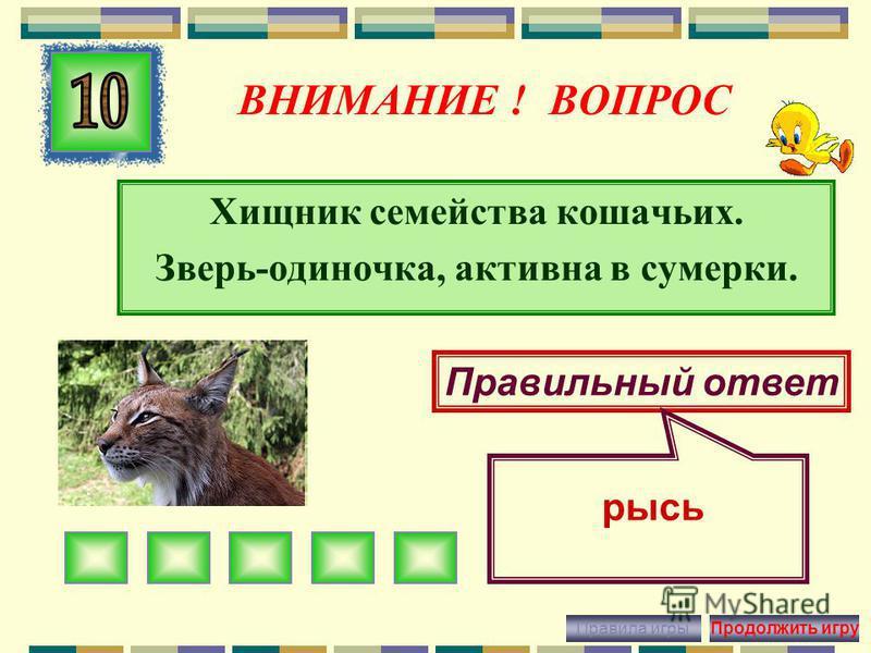 ВНИМАНИЕ ! ВОПРОС Крупное хищное животное, который любит питаться травами, ягодами, орехами. Правильный ответ Бурый медведь Правила игры Продолжить игру