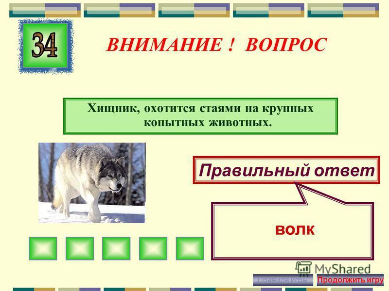 ВНИМАНИЕ ! ВОПРОС Самый маленький олень в Красноярском крае, похож на кенгуру. Правильный ответ кабарга Правила игры Продолжить игру