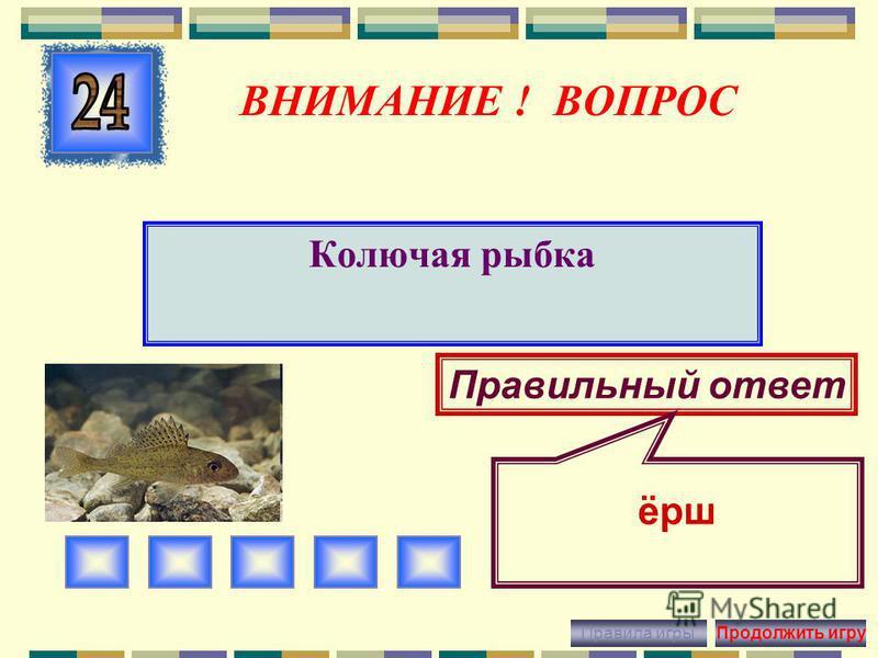 ВНИМАНИЕ ! ВОПРОС Рыба-хищник Правильный ответ щука Правила игры Продолжить игру