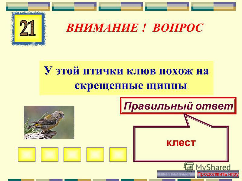 ВНИМАНИЕ ! ВОПРОС Птица-предсказатель Правильный ответ кукушка Правила игры Продолжить игру