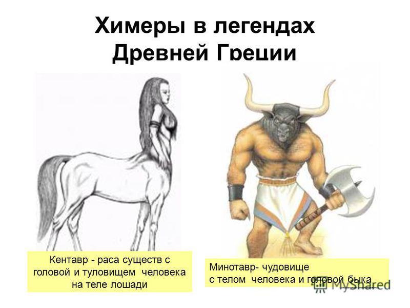 Химеры в легендах Древней Греции Кентавр - раса существ с головой и туловищем человека на теле лошади Минотавр- чудовище с телом человека и головой быка