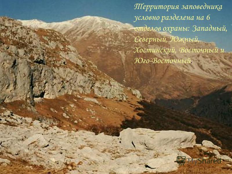 Являясь крупнейшей охраняемой территорией Кавказского перешейка и вторым по величине в Европе, заповедник занимает земли Краснодарского края, Республики Адыгея и Карачаево-Черкесской Республики РФ, вплотную примыкает к государственной границе с Абхаз