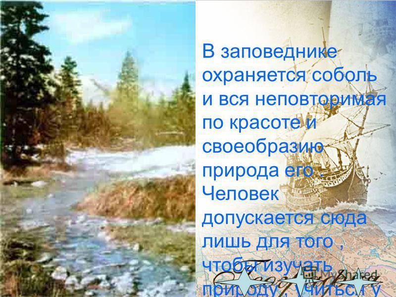 Баргузинский заповедник организован в 1916 году. Общая площадь -263000 га. Наибольшая высота Баргузинского хребта 2840 метров над уровнем моря. Средняя годовая температура минус 4,4. Высших растений - свыше 600 видов. Зверей -39 видов. Птиц -около 23
