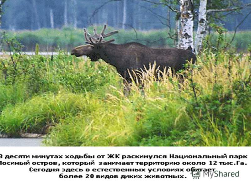 Национальный парк Подмосковье