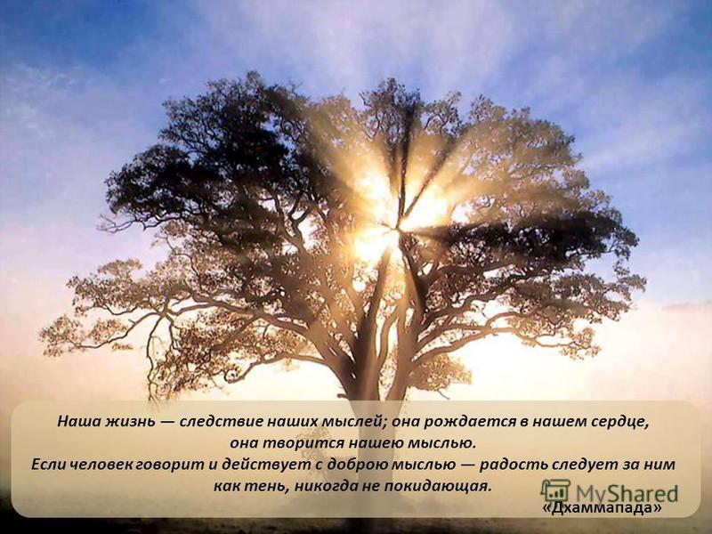 Наша жизнь следствие наших мыслей; она рождается в нашем сердце, она творится нашею мыслью. Если человек говорит и действует с доброю мыслью радость следует за ним как тень, никогда не покидающая. «Дхаммапада»