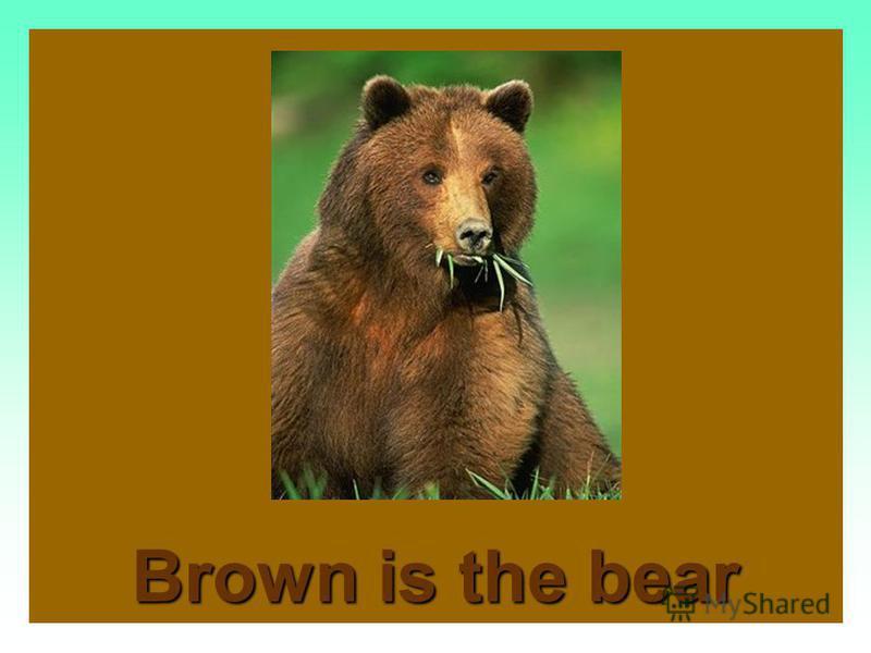 Brown is the mud