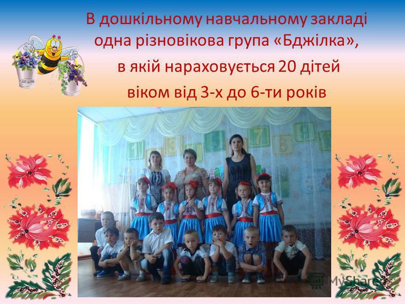 В дошкільному навчальному закладі одна різновікова група «Бджілка», в якій нараховується 20 дітей віком від 3-х до 6-ти років