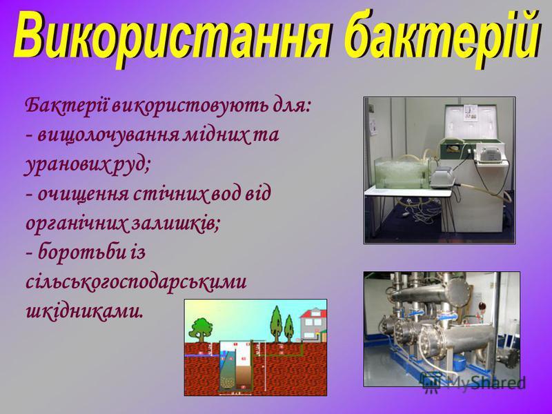 Бактерії використовують для: - вищолочування мідних та уранових руд; - очищення стічних вод від органічних залишків; - боротьби із сільськогосподарськими шкідниками.
