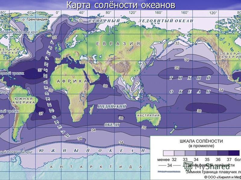 Карта солёности океанов